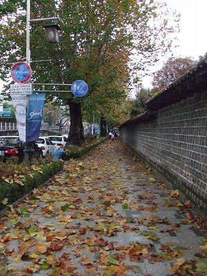 autumn 005