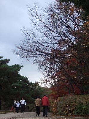 autumn 015