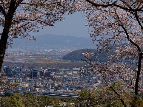 shimamoto_20090411102409.jpg