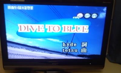 dive20091122.jpg