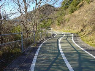 因島大橋へのアプローチ