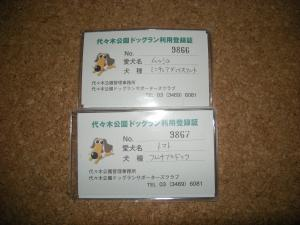 yoyogikouen