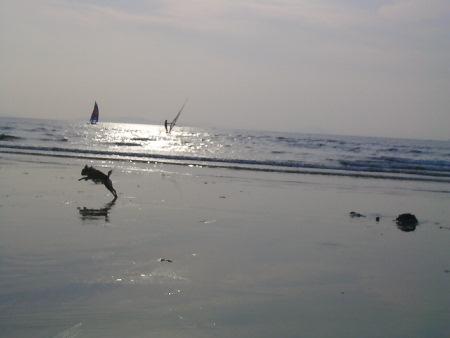20061105-4.jpg