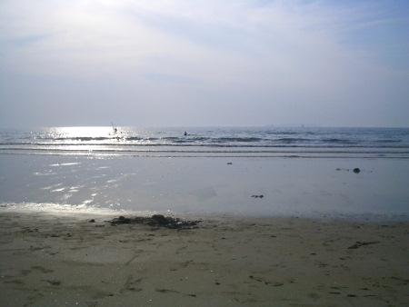 20061105-6.jpg