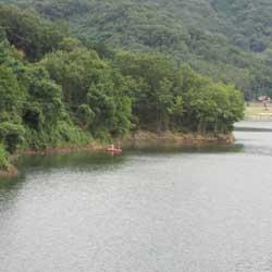 ダムの釣り2