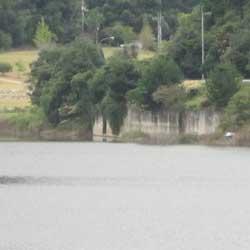 ダムの釣り3