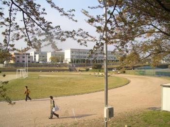 グランドから見る校舎
