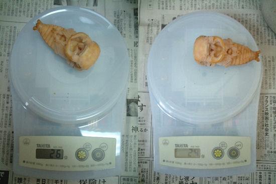 SB11・15 蛹体重