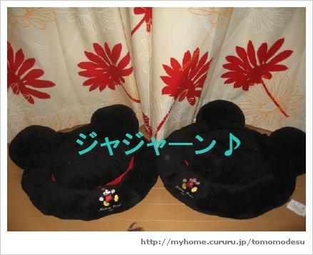 image3456351.jpg