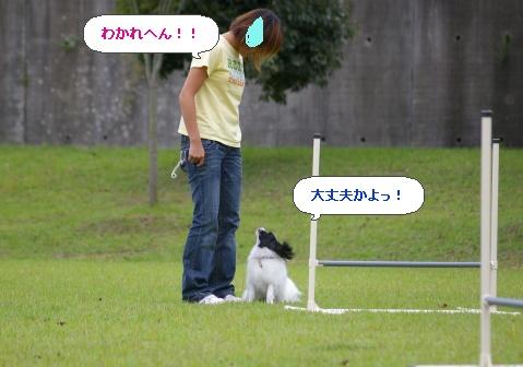image577850.jpg