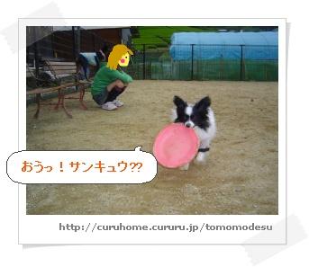 image591735.jpg