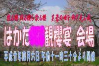SRC_hanami_fuda0.jpg