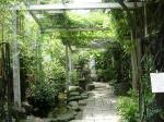 入り口の茂み