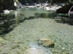 河の水は恐ろしく透明