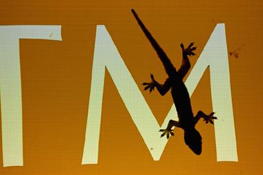 電光掲示板に貼りついたヤモリの画像