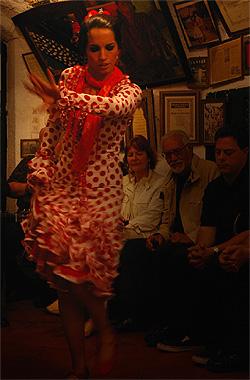 グラナダ風フラメンコを踊る踊り子の画像その1