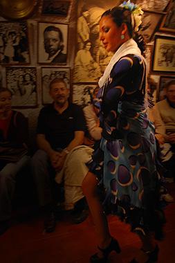 グラナダ風フラメンコを踊る踊り子の画像その2