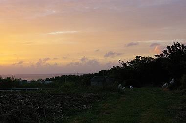 波照間の夕暮れの画像。世界一美しいです