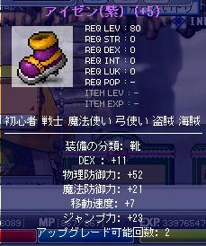 11.17 紫アイゼンD11