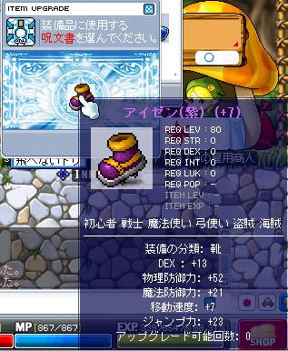 11.17 紫アイゼンD13