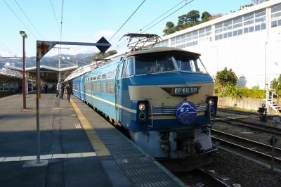 P1040257.jpg