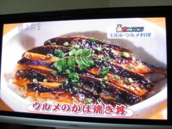 かばやき丼TV 114