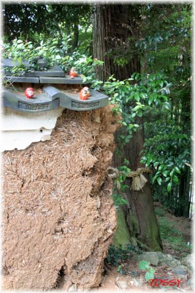 土塀と達磨