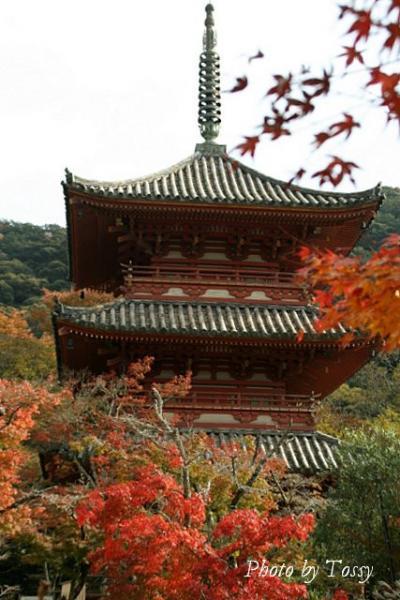 紅葉と三重の塔