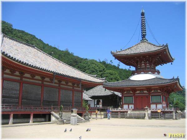阿弥陀堂と多宝塔