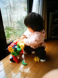コチコと玩具
