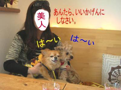 DSCN012.jpg