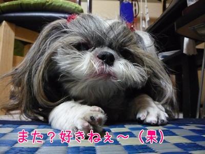 20081009-037.jpg