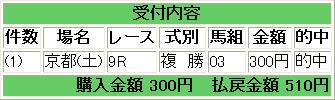 pat_20081101_kyoto9r.png