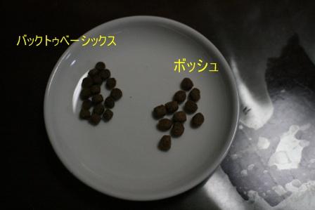 IMG_4684f.jpg
