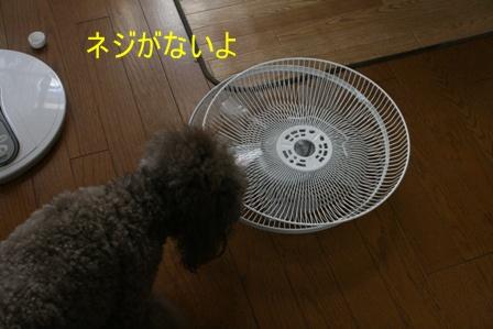 IMG_4692f.jpg