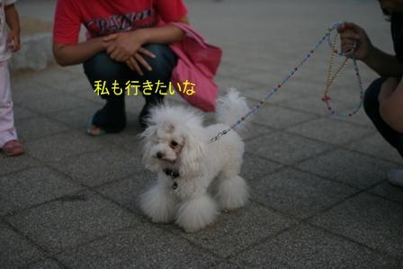 IMG_4770f.jpg
