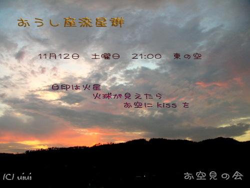 2005 11 12 おうし座流星群カード