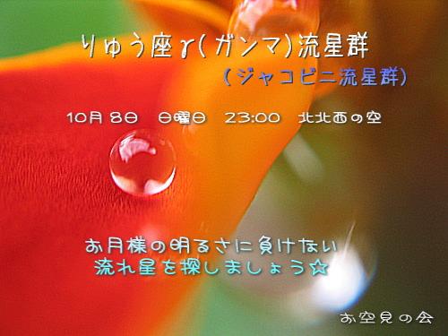 2006 10 8 りゅう座γ流星群カード