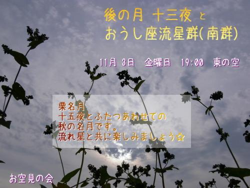 2006 11 3 十三夜 おうし座流星群