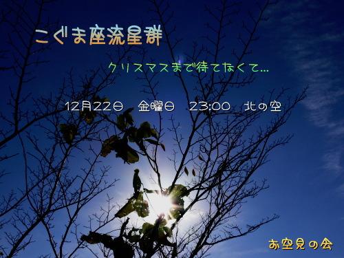 2006 12 22 こぐま座流星群