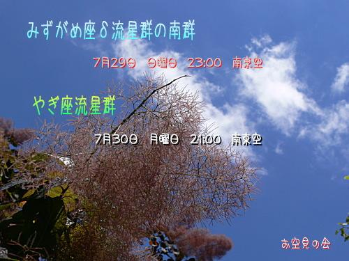 2007 7 29_30 みずがめ座δとやぎ座流星群