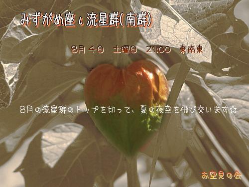 2007 8 4 みずがめ座ι流星群(南群)