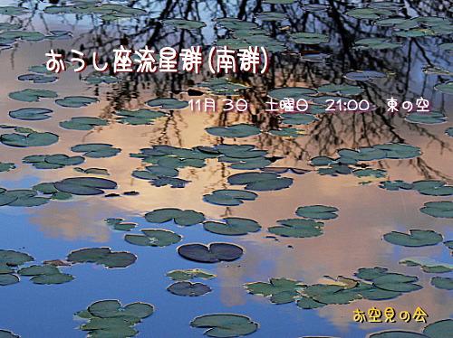 2007 11 3 おうし座流星群(南群)