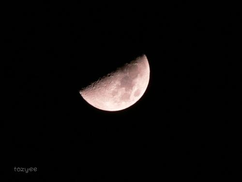 2008 3 14 上弦の月