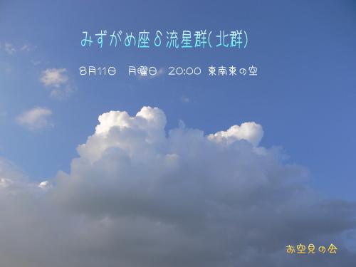 2008 8 11 みずがめ座δ流星群
