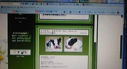091002_124500.jpg