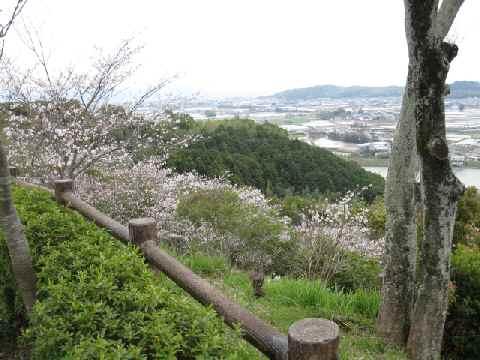 okouyama13.jpg