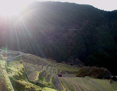 三重県熊野市の丸山千枚田