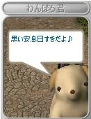 20060307155350.jpg