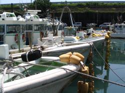 IMG_1992_convert_20090512182302漁船
